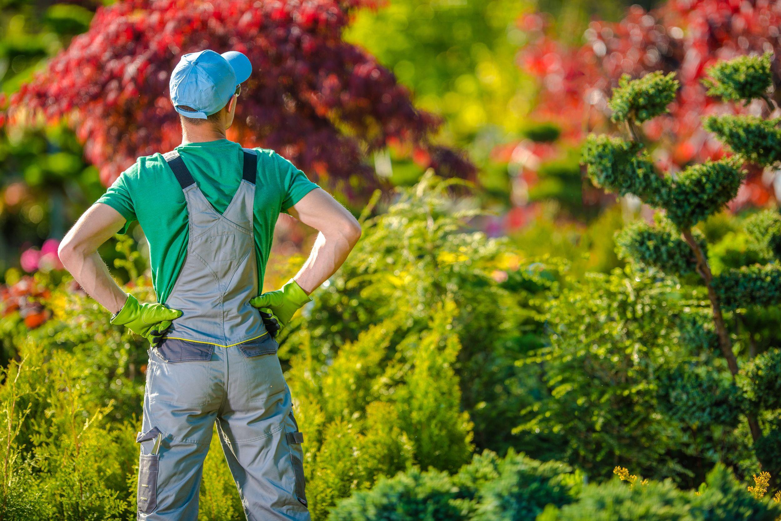 Gemotiveerde tuinarbeider